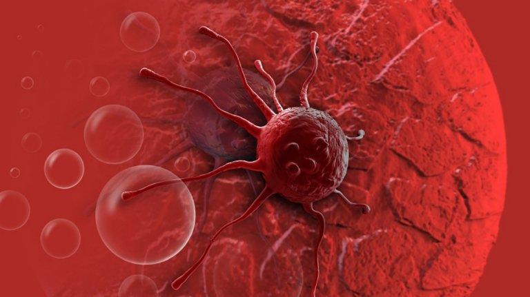 Ricerca Humanitas scopre un meccanismo della crescita tumorale