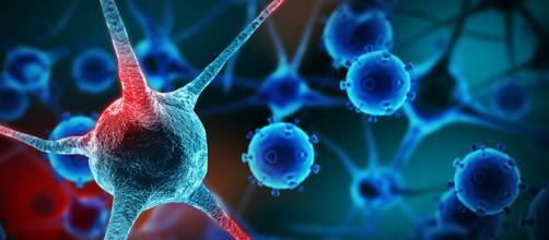 """Scoperto un nuovo meccanismo per """"affamare"""" i tumori vasi sanuigni"""