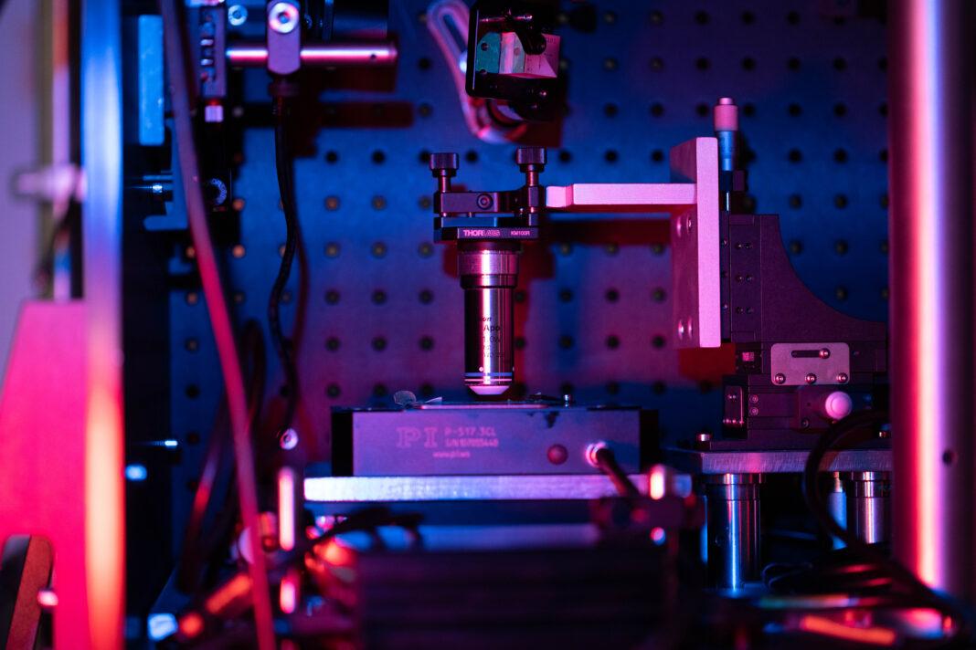 il progetto CRIMSON rivoluzionerà lo studio dell'origine cellulare delle malattie