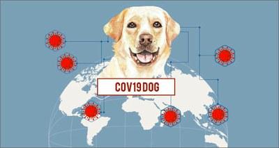 Covid: sensori, intelligenza artificiale e cani 'molecolari' per rintracciare il virus